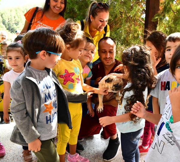 İzmir'de hayvan barınağını bir yılda 1825 öğrenci ziyaret etti.