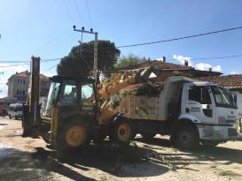 Şiddetli rüzgâr ve yağmur etkisiyle devrilen 32 ağaç için Bergama'da çalışma başlatıldı